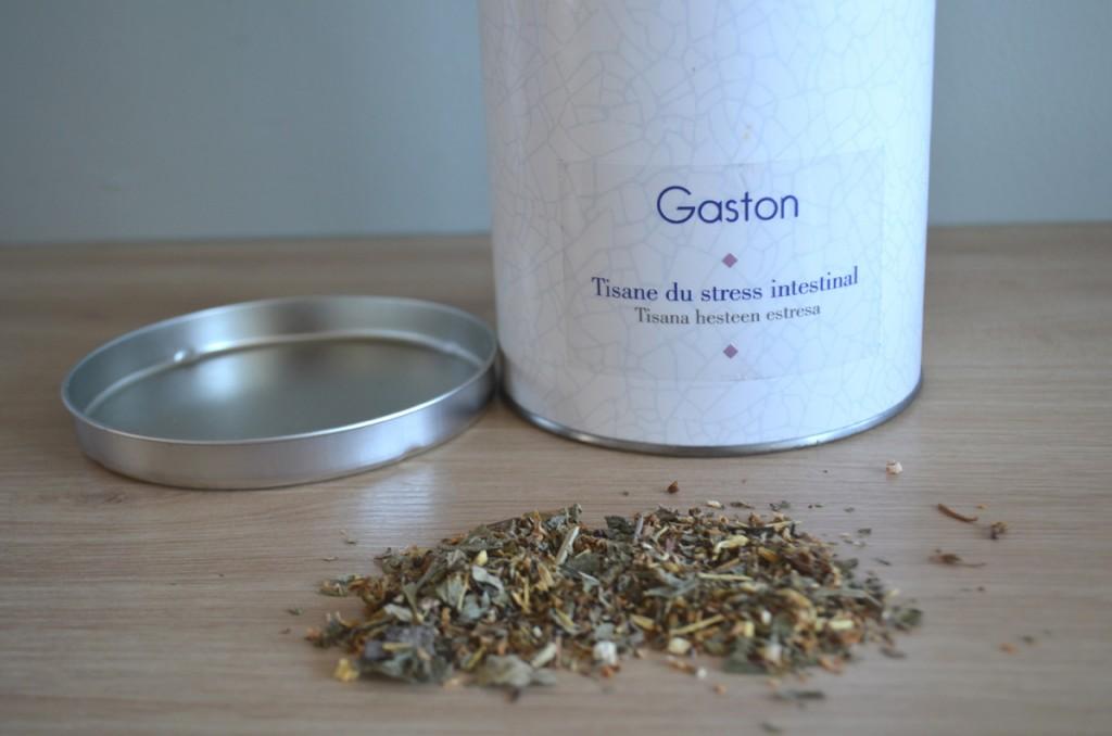Gaston Casa Tisana