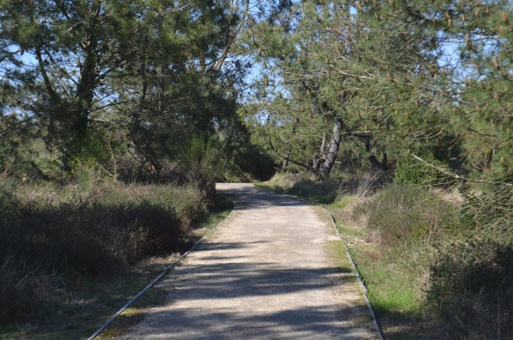 Sentier Parc Izadia