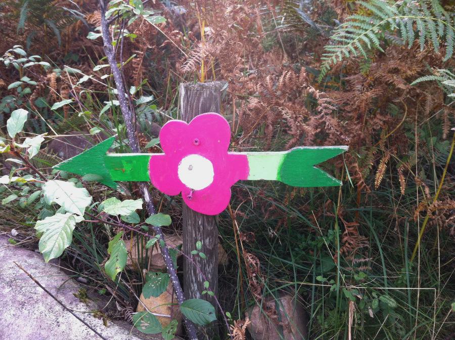venta loretxoa fleurs